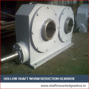 Double Output Worm Reduction Gearbox Manufacturer aurangabad