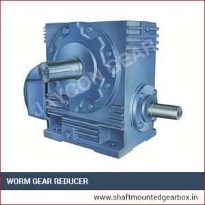 Worm Gear Reducer India